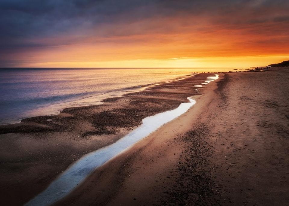 Gąski nad morzem